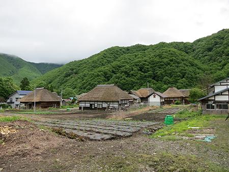 201206mizuhiki1.JPG