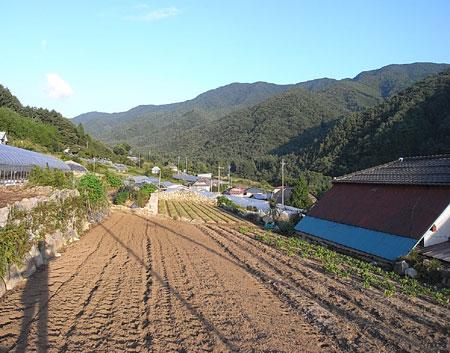 ashigawa.jpg