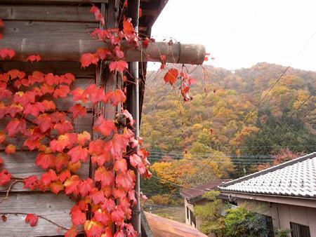 ashigawa01.jpg
