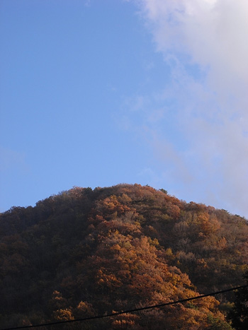 ashigawa201011.JPG