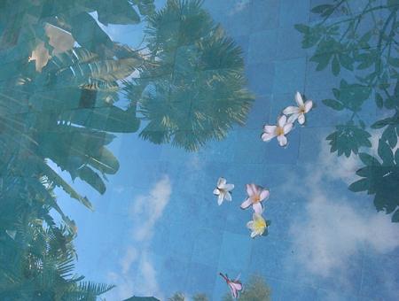 pool_sky.JPG